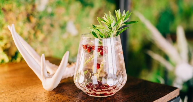 cocktail with cranberries and fresh rosemary with an animal bone next to it